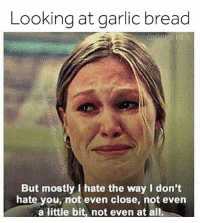 #Haters: Looking at garlic bread  But mostly hate the way I don't  hate you, not even close, not even  a little bit, not even at all #Haters