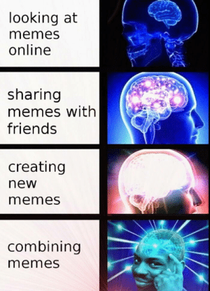 Memes Online: looking at  memes  online  sharing  memes with  friends  creating  new  memes  combining  memes
