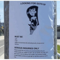 Disappointed, God, and Memes: LOOKING FOR GOTH GF  MUST BE  90th  a gir  -ready to be emotionally and physically disappointed  full time  SERIOUS INQUIRIES ONLY  ase email me at lonelysadandpathetic@omail com  Please email me i swear to god i am so lonely and  sad i dont  evon care if you're doing it as a joke ijust needed huano  act please someone just talk to me this a serious cry o  help link in my bio sign up for discount codes students only