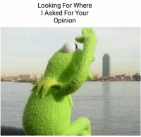 kermit: Looking For Where  I Asked For Your  Opinion