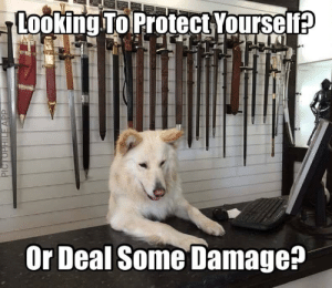 Funny, True, and Looking: Looking To Protect Yoursel  Or Deal Some Damage? The True Companions via /r/funny https://ift.tt/2AZYFCU