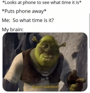 What time-line are we in? - - - - - #pewdiepie #ylyl #memereview #pewdiepiesubmissions pewnews #lwiay #lwiaymemes #dailymemes #marzia #memes: *Looks at phone to see what time it is*  *Puts phone away*  Me: So what time is it?  My brain:  Good question What time-line are we in? - - - - - #pewdiepie #ylyl #memereview #pewdiepiesubmissions pewnews #lwiay #lwiaymemes #dailymemes #marzia #memes
