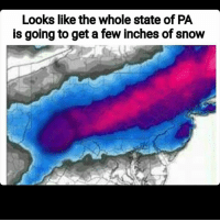 Memes, 🤖, and Inch: Looks like the whole state of PA  is going to get a few inches of snow Or a fee inches if something else 😏😏😏 - - - - - - filthyfrank idubbbztv bleach alt-right conservative liberal tumblr gender islamaphobia meme dankmeme kawaii hentaii ecchii blm blacklivesmatter feminism feminist edgy cringe cringy funny dank autism brony cancer furry fursuit trump hillary