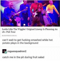Fucking, Memes, and Potato: Looks Like The Wiggles' Original Lineup Is Planning An  18+ Pub Tour  MUSICFEEDS.COM.AU  can't wait to get fucking smashed while hot  potato plays in the background  roguesquadron2  catch me in the pit during fruit salad Bangers