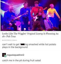 What a show this would be: Looks Like The Wiggles' Original Lineup Is Planning An  18+ Pub Tour  MUSICFEEDS.COM.AU  can't wait to get fing smashed while hot potato  plays in the background  roguesquadron2  catch me in the pit during fruit salad What a show this would be