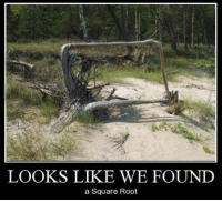 Whose square root: LOOKS LIKE WE FOUND  a Square Root Whose square root