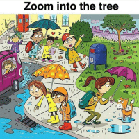 Memes, Zoom, and Tree: Loom into the tree  Zoom into the car  My name jeff EVERYBODY