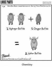 Memes, Buffalo, and Oxygen: LOOSE PARTS  DANEBLATEK  2 Hydrogen Buffalo  1 Oxygen Buffalo  1 Water Buffalo  Blazek.  Chemistry Who gnu?