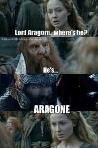 Gumli iz teh biggest troll in teh world: Lord Aragorn where's he?  lorTel  He's..  ARAGONE Gumli iz teh biggest troll in teh world