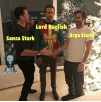Lgbt, Memes, and Sansa Stark: Lord Baelish,  Arya Starl  Sansa Stark  LGBT https://t.co/sqcsjKyz9f