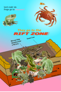 Heaven, Ocean, and Rift: lord crab! do  frogs go to Heaven?  No.  They go to the  RIETZONE  Mid-ocean Ridge  (Spreading Center  or Rift Zone)  Oceanic Crust  Trans  ITHOSPHERE  ぐ  -SPHERE  Kenneth A. Bevis