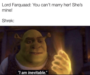 "The way it should have ended: Lord Farquaad: You can't marry her! She's  mine!  Shrek:  ""I am inevitable."" The way it should have ended"