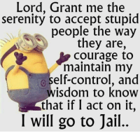 Dank, Elf, and Jail: Lord, Grant me the  serenity to accept stupid  people the way  they are,  Courage to  maintain my  elf-control, and  wisdom to know  that if I act on it  I will go to jail.