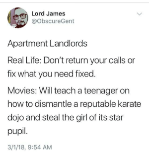Life, Movies, and Girl: Lord James  @ObscureGent  Apartment Landlords  Real Life: Don't return your calls or  fix what you need fixed.  Movies: Will teach a teenager on  how to dismantle a reputable karate  dojo and steal the girl of its star  pupil.  3/1/18, 9:54 AM Either way, you're doing the painting