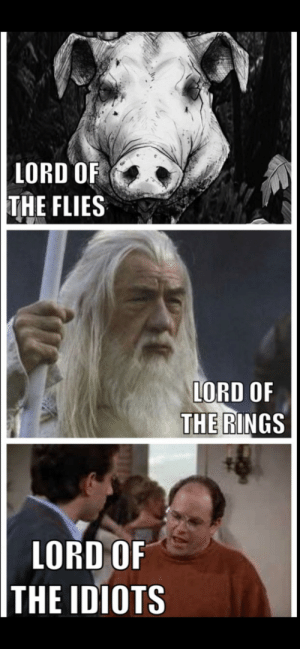 The great Lords: LORD OF  THE FLIES  ORD OF  THE RINGS  LORD OF  THE IDIOTS The great Lords