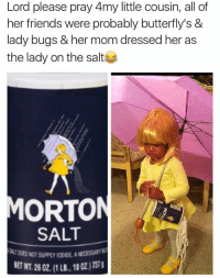 Friends, Mom, and Salt: Lord please pray 4my little cousin, all of  her friends were probably butterfly's &  lady bugs & her mom dressed her as  the lady on the salt  MORTON  SALT  SALT DOES NOT SUPPLY IODIDE A  MECESSARY  ET WT. 26 0Z. (1 LB., 10 0Z.)7370