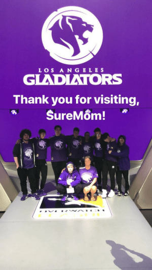 Tumblr, Thank You, and Blog: LOS A N GELE S  GLADIATORS  Thank you for visiting, theowbros:  Suremom is too pure for us