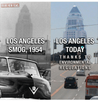 BernieSanders notmeus politicalrevolution stillSanders fightforwhatsright compassion integrity honesty Bernielovewave Berniewouldhavewon consistency vote enoughisenough Berniewearewithyou alwaysSanders foreverSanders kindness lovetrumpshate unity dontgiveup hope equality justice love peace keepfighting therevolutioncontinues crueltyfree loveislove resist 🔥🔥🔥🔥: LOS ANGELES  LOS ANGELES  SMOG, 1954  TODAY  THANKS TO  EENVIRONMENTAL  REGULATIONS  6263  Year BernieSanders notmeus politicalrevolution stillSanders fightforwhatsright compassion integrity honesty Bernielovewave Berniewouldhavewon consistency vote enoughisenough Berniewearewithyou alwaysSanders foreverSanders kindness lovetrumpshate unity dontgiveup hope equality justice love peace keepfighting therevolutioncontinues crueltyfree loveislove resist 🔥🔥🔥🔥