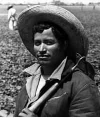 """Memes, History, and World War II: Los Braceros, my grandpa was a bracero ❤✊ Repost @addisuns """"Remember that time the U.S. asked Mexico to send its hard-working men and save the U.S. agricultural economy during war time? That time from 1942 to 1964, when the U.S. offered 4.6 million contracts through The BraceroProgram because many American growers feared World War II would bring labor shortages to low-paying, arduous, agricultural jobs scorned by most Americans? And then they kept renewing it because U.S. growers needed the cheap labor. This is how circular migration from Mexico to the U.S. was encouraged. This is the history of the Mexican immigrants some Americans now scorn."""" immigration http:-amhistory.si.edu-onthemove-themes-story_51_5.html"""