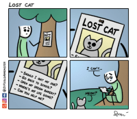 "Life, Omg, and School: LOST CAT  LOST CAT  I CANT  -SHOLD I QUIT MY JOB?  -Go BACK TO SCHOOL?  - OPEN MY DREAM BAKERY?  - WHERE'S MY LIFE GOING?  CAN You HELP ME?  MEOW? <p><a href=""https://omg-images.tumblr.com/post/162282108827/lost-cat"" class=""tumblr_blog"">omg-images</a>:</p>  <blockquote><p>Lost cat</p></blockquote>"
