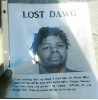 "Funny, Yo, and Lost: LOST DAWG  I was walking with my dawg 2 days ago on Abess Blvd.  when he ran off to play with some other dawgs, haven't  seen him since  He answers to ""dawg"", JaQuan, or just  simply ""Yo"". If found please tell him to hit me up. Deez broz ain't loyal 😒"