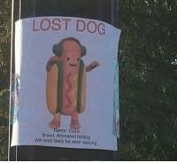 Dancing, Dank, and Lost: LOST DOG  ano: Gisco  Breed Animated hotdog  Will most likely be seen dancing