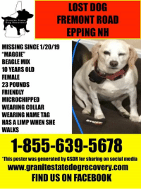 """Facebook, Family, and Martin: LOST DOG  FREMONT ROAD  EPPING NH  Granite State  Dog Recovery  MISSING SINCE 1/20/19  """"MAGGIE""""  BEAGLE MIX  10 YEARS OLD  FEMALE  23 POUNDS  FRIENDLY  MICROCHIPPED  WEARING COLLAR  WEARING NAME TAG  HAS A LIMP WHEN SHE  WALKS  1-855-639-5678  This poster was generated by GSDR for sharing on social media  www.granitestatedogrecovery.com  FIND US ON FACEBOOK Update: Maggie has been found safe.She was  buried under her house. Please look under your porches, sheds etc. if you have a lost dog in your area..they could be seeking shelter and become stuck. Welcome home Maggie!   Urgent missing 10 year old beagle mix from Fremont Road/near Martin Road in Epping NH since 1/20/19.  Maggie is about 23 pounds/10 years old /friendly and microchipped and wearing collar/name tag.  Maggie walks with a limp, please watch for her if you live in the area.  Very Worried Family 1-855-639-5678"""