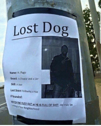 Hoe, Memes, and Shit: Lost Dog  Name: H. Page  Breed: A Cheater and a Liar  Skill: A User  Last Seen: Following a Hoe  If founded:  PuckouTas HEIS FULL oF sHIT, He may be  branginYour Neighborhood 💀
