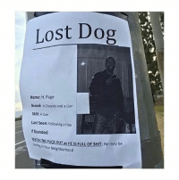 Hoe, Memes, and Shit: Lost Dog  Name: H. Page  Breed: Cheater and a Liar  Skill: A User  Last Seen: Following a Hoe  If founded:  MATOATHEFUcKouT as HEus FULLOF SHIT He may be  Your Neighborhood 😂😂😂lol
