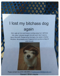 Bitch, Bruh, and Fake: lost my bitchass dog  again  He's ugly as fuck and keeps running away but I still love  him, plus I already bought him shit and l don't wanna  return the stuff. Please bring him back, his name is Senior  Woofers. He probably won't respond to it cus he's a fake lil  bitch though.  Please contact me at 661-440-5950 or  booteyeater6969@gmail.com  Reward: $5ish maybe Bruh😂😂