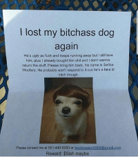 Bitch, Fake, and Love: lost my bitchass dog  again  He's ugly as fuck and keeps running away but I still love  him, plus l already bought him shit and l don't wanna  return the stuff. Please bring him back, his name is Senior  Woofers. He probably won't respond to it cus he's a fake lil  bitch though.  Please contact me at 661-440-5950 or  booteyeater6969@gmail.com  Reward: $5ish maybe