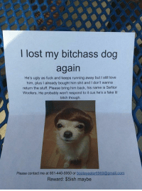Bitch, Fake, and Love: lost my bitchass dog  again  He's ugly as fuck and keeps running away but l still love  him, plus I already bought him shit and l don't wanna  return the stuff. Please bring him back, his name is Senior  Woofers. He probably won't respond to it cus he's a fake lil  bitch though  Please contact me at 661-440-5950 or  booteyeater6969@gmail.com  Reward: $5ish maybe BRUHH 😂😂 https://t.co/22FohDLC8w