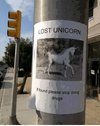 Lost unicorn lost unicorn wtf lol haha rofl cool amazing lmao: LOST UNICORN  lf found please stop doing  drugs Lost unicorn lost unicorn wtf lol haha rofl cool amazing lmao