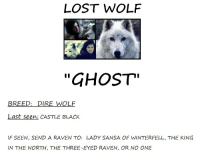 "Memes, Lost, and Black: LOST WOLF  ""GHOST""  BREED: DIRE WOLF  Last seen: CASTLE BLACK  IF SEEN, SEND A RAVEN TO: LADY SANSA OF WINTERFELL, THE KING  IN THE NORTH, THE THREE-EYED RAVEN, OR NO ONE So I see Thrones memes are half a thing again wheres Ghost???"