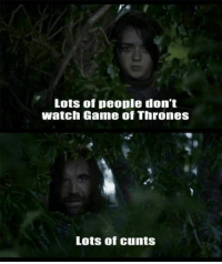 Game of Thrones: Lots of people don't  Watch Game of Thrones  Lots of cunts