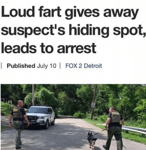 me_irl: Loud fart gives away  suspect's hiding spot,  leads to arrest  | Published July 10 | FOX 2 Detroit me_irl