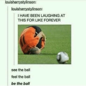 {2019} Funny Football Memes - Viral Collection - Fresh Viral Memes: louisharrystylinson:  louisharrystylinson:  I HAVE BEEN LAUGHING AT  THIS FOR LIKE FOREVER  see the ball  feel the ball  be the ball {2019} Funny Football Memes - Viral Collection - Fresh Viral Memes