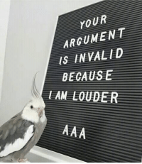 Argument Is Invalid, Argument, and Lam: LoUR  ARGUMENT  IS INVALID  BECAUSE  LAM LOUDER tru