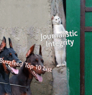 Dank, Memes, and Target: lournalistic  Integrity  Buzzfeed Top 10 List Journalism 101 by Yowley FOLLOW HERE 4 MORE MEMES.