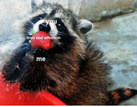 Fat Raccoon: love and affection  me