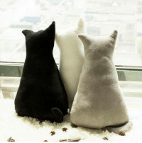 """Animals, Cats, and Cute: Love Cats? Get Cozy with this cute cat shaped pillow!!! 🔥 50% OFF + FREE Shipping for first 25 Cat Lovers! Link in Bio @cutie.animals.page . . GRAB YOURS 👉 @meowaish BIO Or go to==> http:-bit.ly-2ovqH1e . . ⚠️Only Few Left⚠️ Buy now before They Sold Out! ❤THIS IS ORIGINAL PILLOW❤ . . ⚠️CAUTION: your cat will get very jealous⚠️ Get an additional $10 OFF on accessories collection! Coupon code: """"MY$10"""""""