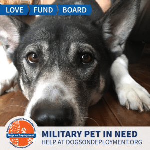 Dogs, Love, and Memes: LOVE  FUND  BOARD  MILITARY PET IN NEED  Dogs on Deployment  HELP AT DOGSONDEPLOYMENT.ORG  idogsondeployment.ors  your troops by boaraing their pets Samson is from #LosAngelos and his owner considers him a very loving dog. He needs a place to stay until the end of September! Samson loves being outdoors, but needs to stay on a leash or he will run forever! Can you help?  Location: Los Angeles, CA Date: July 24, 2019 - September 23, 2019  Pet's Name: Samson Breed: Siberian Husky Gender: Neutered Male Size: Large (46-65 lbs) Age: Adolescent (1-4 years)  Visit https://www.dogsondeployment.org/profile/57259 to learn more about us, register and contact our owner! (Must be registered and logged on to view all information!)