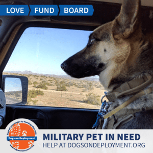Dogs, Love, and Memes: LOVE  FUND  BOARD  MILITARY PET IN NEED  Dogs on Deployment  HELP AT DOGSONDEPLOYMENT.ORG  dogsondeployment.ors  your troops by boarding their pets #USNavy member recently moved to #SanDiego and doesn't have the support network to help watch his dog for his upcoming deployment. Can you help?  Location: San Diego, CA Date: July 20, 2019 - August 4, 2019  Pet's Name: Benelli Breed: German Shepherd Gender: Spayed Female Size: Large (46-65 lbs) Age: Adolescent (1-4 years)  Visit https://www.dogsondeployment.org/profile/55039 to learn more about us, register and contact our owner! (Must be registered and logged on to view all information!)