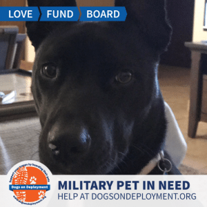 Dogs, Energy, and Love: LOVE  FUND  BOARD  r  Dogs on Deployment  MILITARY PET IN NEED  HELP AT DOGSONDEPLOYMENT.ORG  dossondeployment.ors  your troops by boaraing their pets Maggis is from #WashingtonState and needs a boarder until September! She is good with other dogs and kids, and is both high energy and low maintenance! Maggie loves playing catch and running! Can you help out?   Location: Vancouver, WA Date: July 1, 2019 - September 1, 2019  Pet's Name: Maggie Breed: Labrador Retriever Gender: Spayed Female Size: Large (46-65 lbs) Age: Adolescent (1-4 years)  Visit https://www.dogsondeployment.org/profile/56985 to learn more about us, register and contact our owner! (Must be registered and logged on to view all information!)