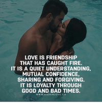 Tag Your Love ❤️: LOVE IS FRIENDSHIP  THAT HAS CAUGHT FIRE.  IT IS A QUIET UNDERSTANDING,  MUTUAL CONFIDENCE,  SHARING AND FORGIVING.  IT IS LOYALTY THROUGH  GOOD AND BAD TIMES.  WWW. HIGHINLOVE.CO Tag Your Love ❤️