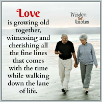 Love Is Growing Old Together Witnessing and Cherishing All ...