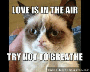 """""""Love is in the air. Try not to breathe.""""  #grumpycatmemes #ripgrumpycat #memes: LOVE IS IN THE AIR  TRY NOT TO BREATHE  OnlineMeme Generator.com """"Love is in the air. Try not to breathe.""""  #grumpycatmemes #ripgrumpycat #memes"""