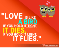 "Love, Memes, and 🤖: ""LOVE IS LIKE  A BIRD  IF YOU HOLD IT TIGHT  keLoveQuotes.Com  IT DIES  IF YOU HOLD IT LIGHT  IT FLIES.""  LikeLoveQuotes.Com"