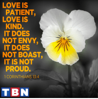 Memes, 🤖, and Corinthians: LOVE IS  PATIENT  LOVE IS  KIND.  IT DOES  NOT ENVY,  IT DOES  NOT BOAST,  IT IS NOT  PROUD.  1 CORINTHIANS 13:4  T BN And now these three remain: faith, hope and love. But the greatest of these is love.