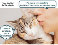 Love Machine By The Miracles I M Just A Love Machine And I Won T Work For Nobody But Mew I Need A Catslave Not A Purramour Love Meme On Me Me